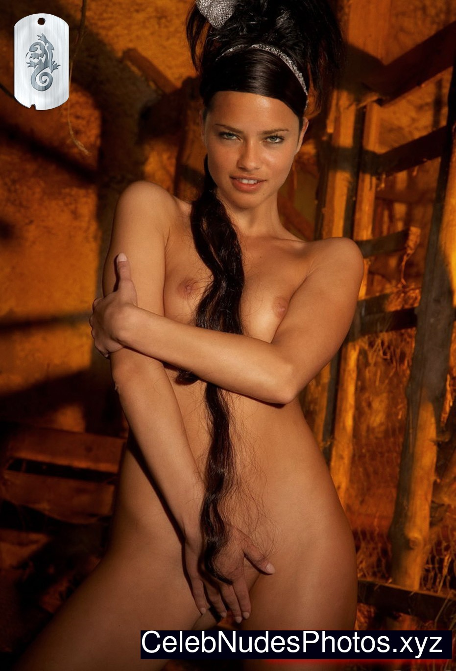 Opinion Adriana lima hot celebrity are some