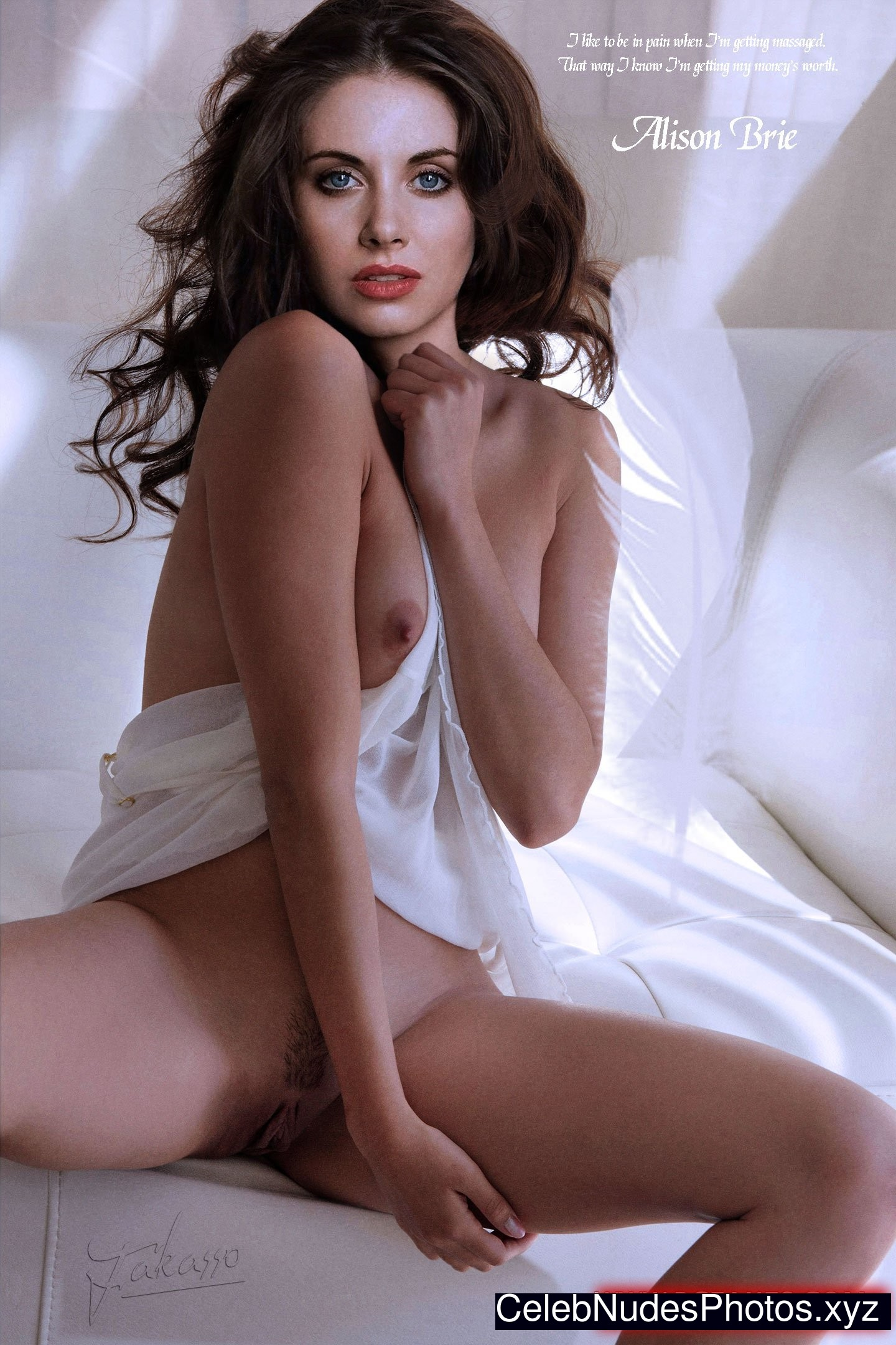 Alison Brie Nude Celebrity Picture sexy 12
