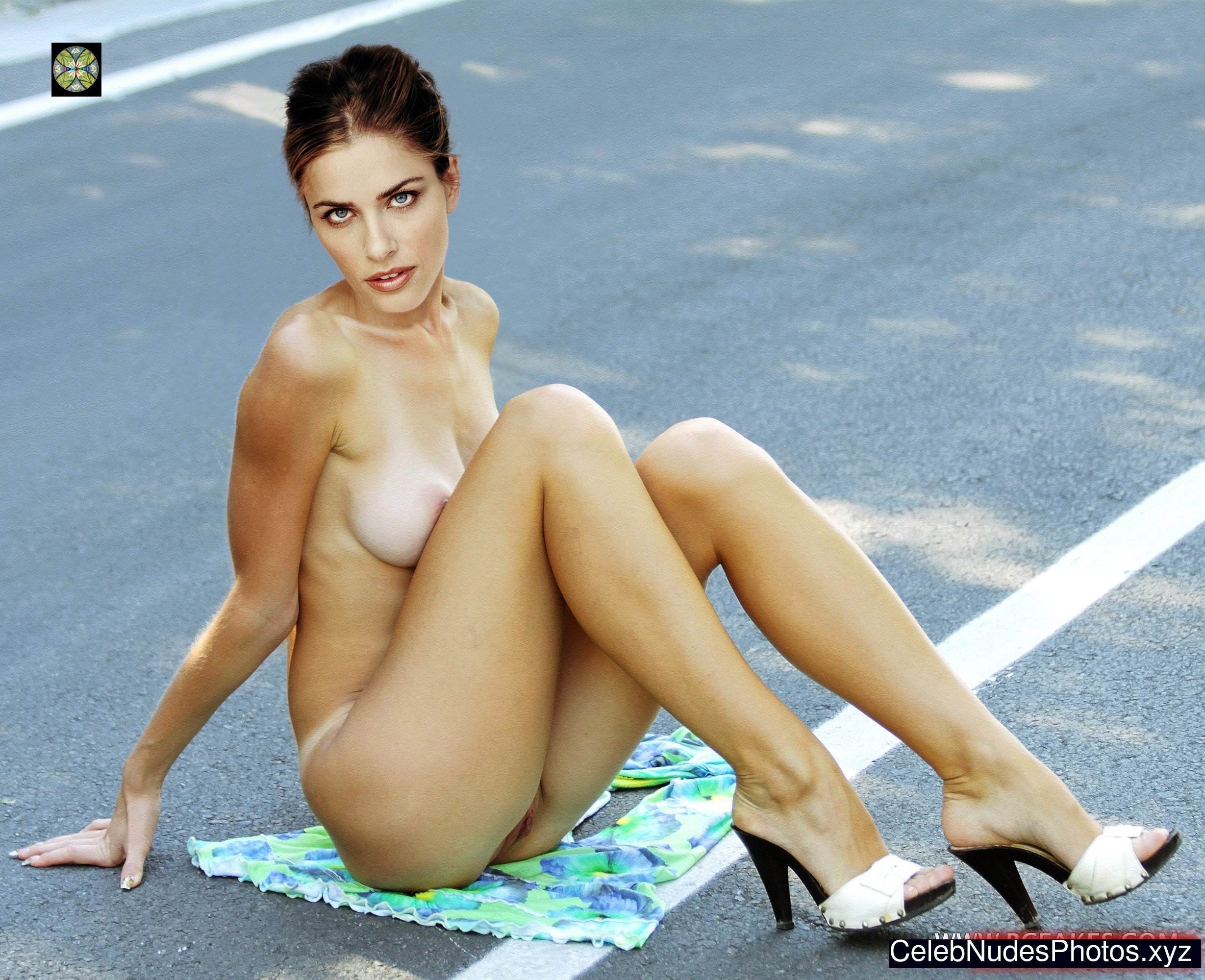 Amanda peet nude the whole nine yards 8