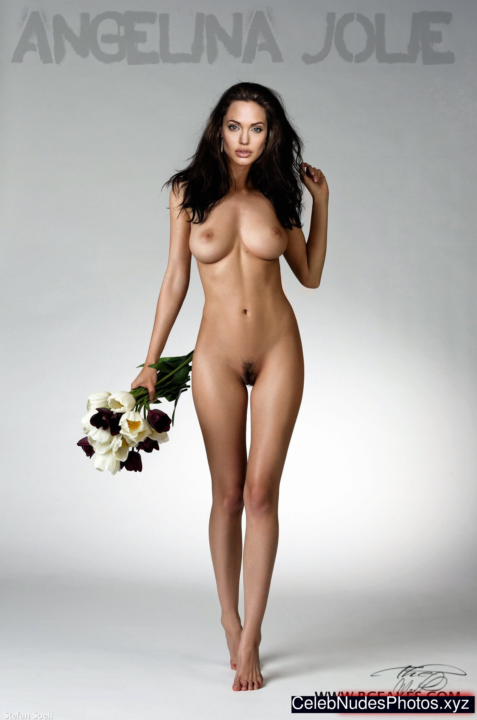 Angelina Jolie Newest Celebrity Nude sexy 9
