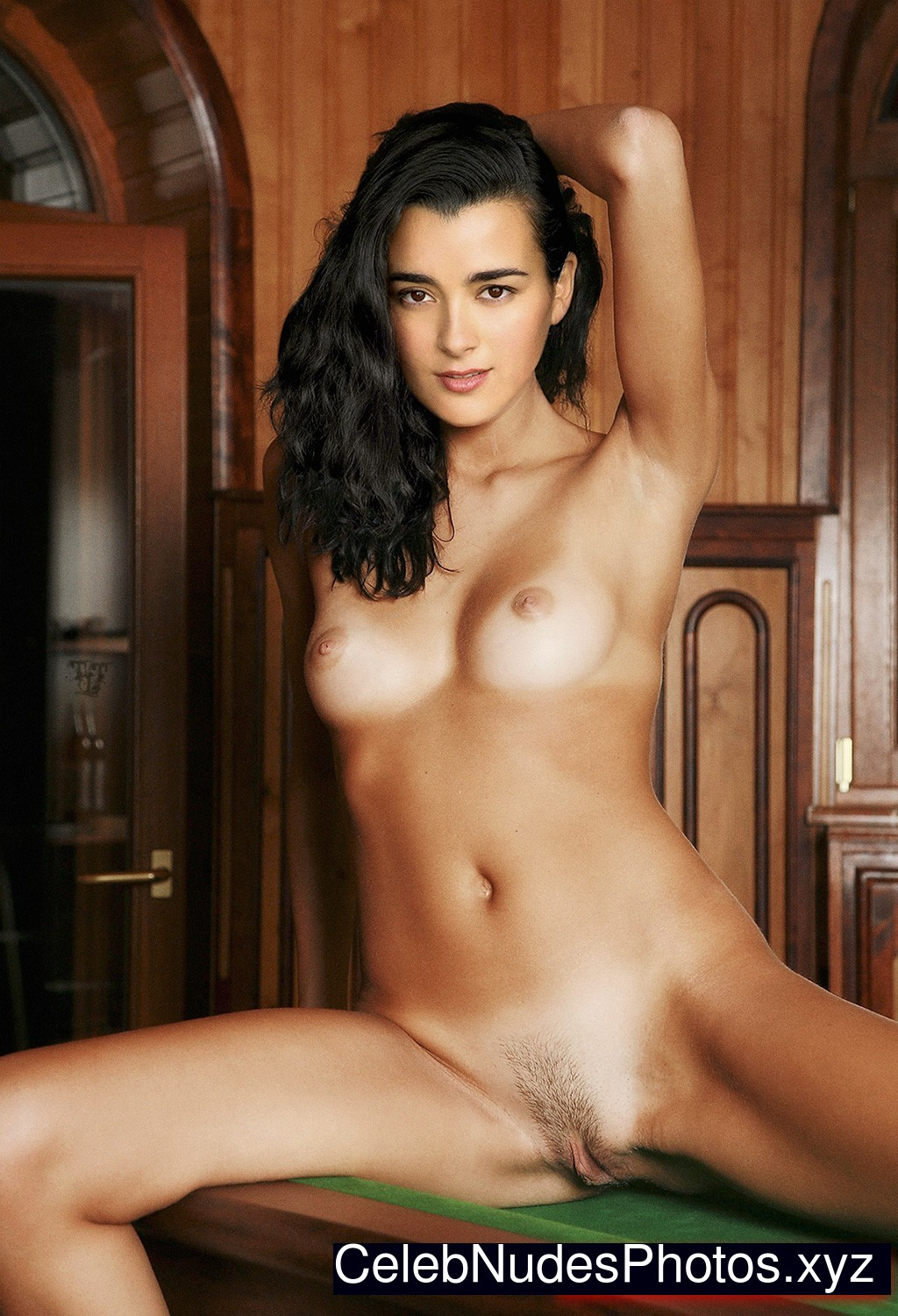 Pity, that Fake cote de pablo pictures consider