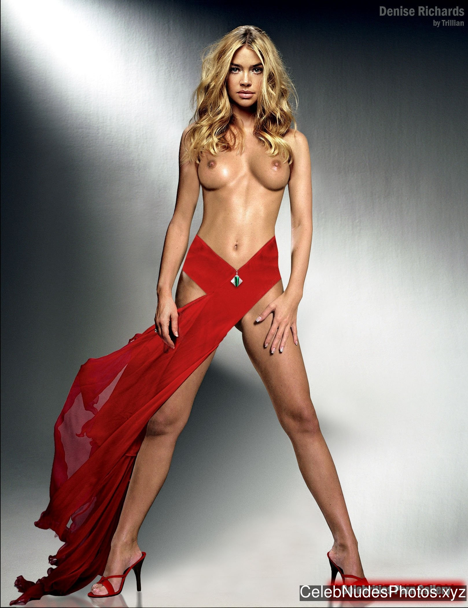 Denise Richards Celebrities Naked sexy 24