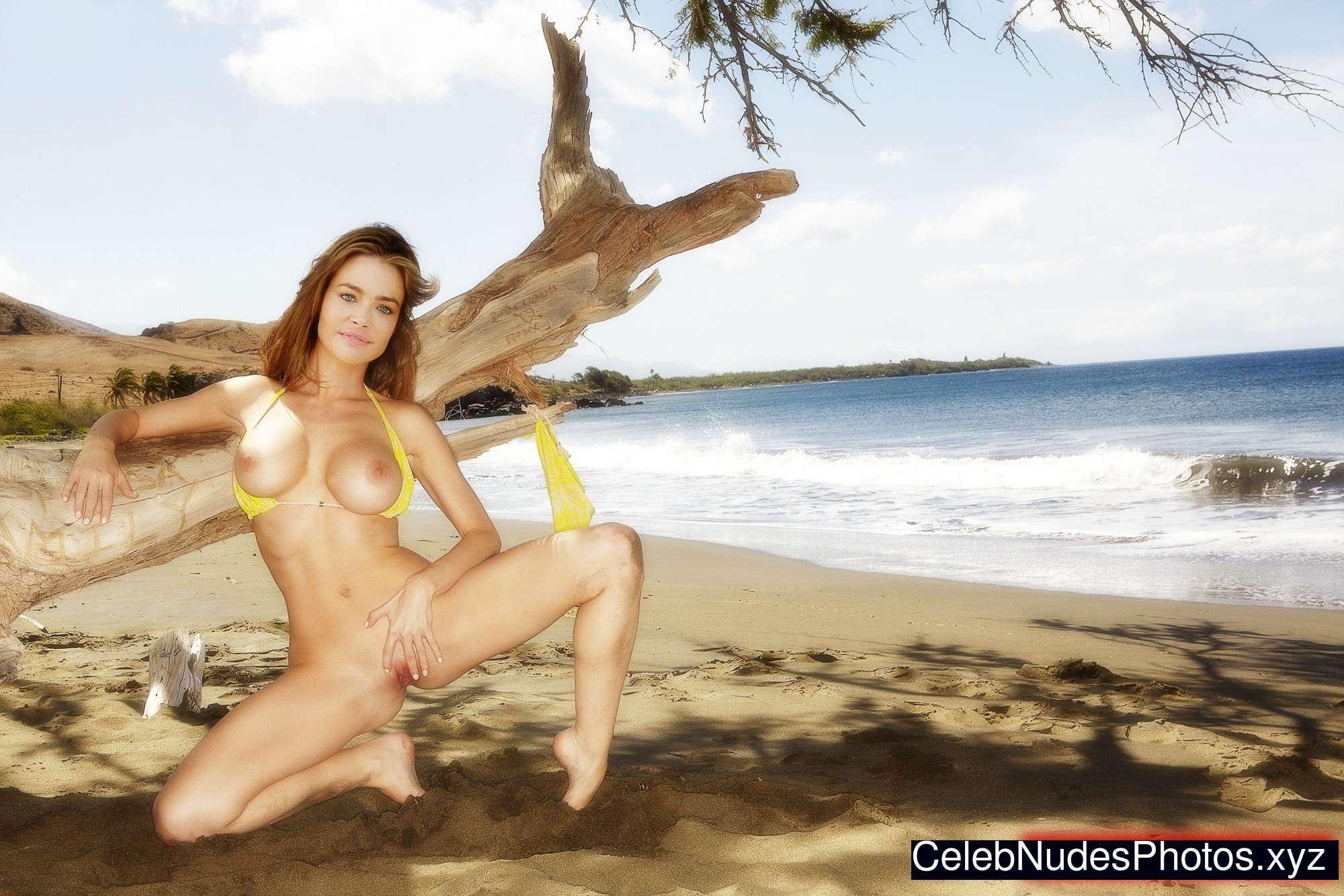Denise Richards Nude Celeb Pic sexy 6