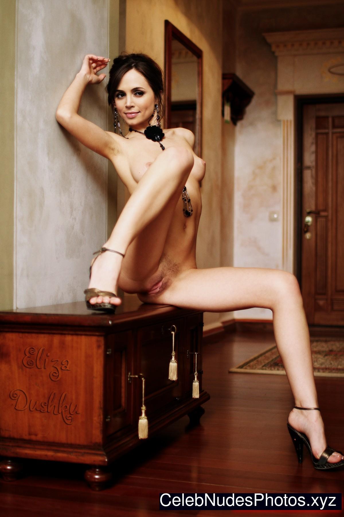 Eliza Dushku fake nude celebs