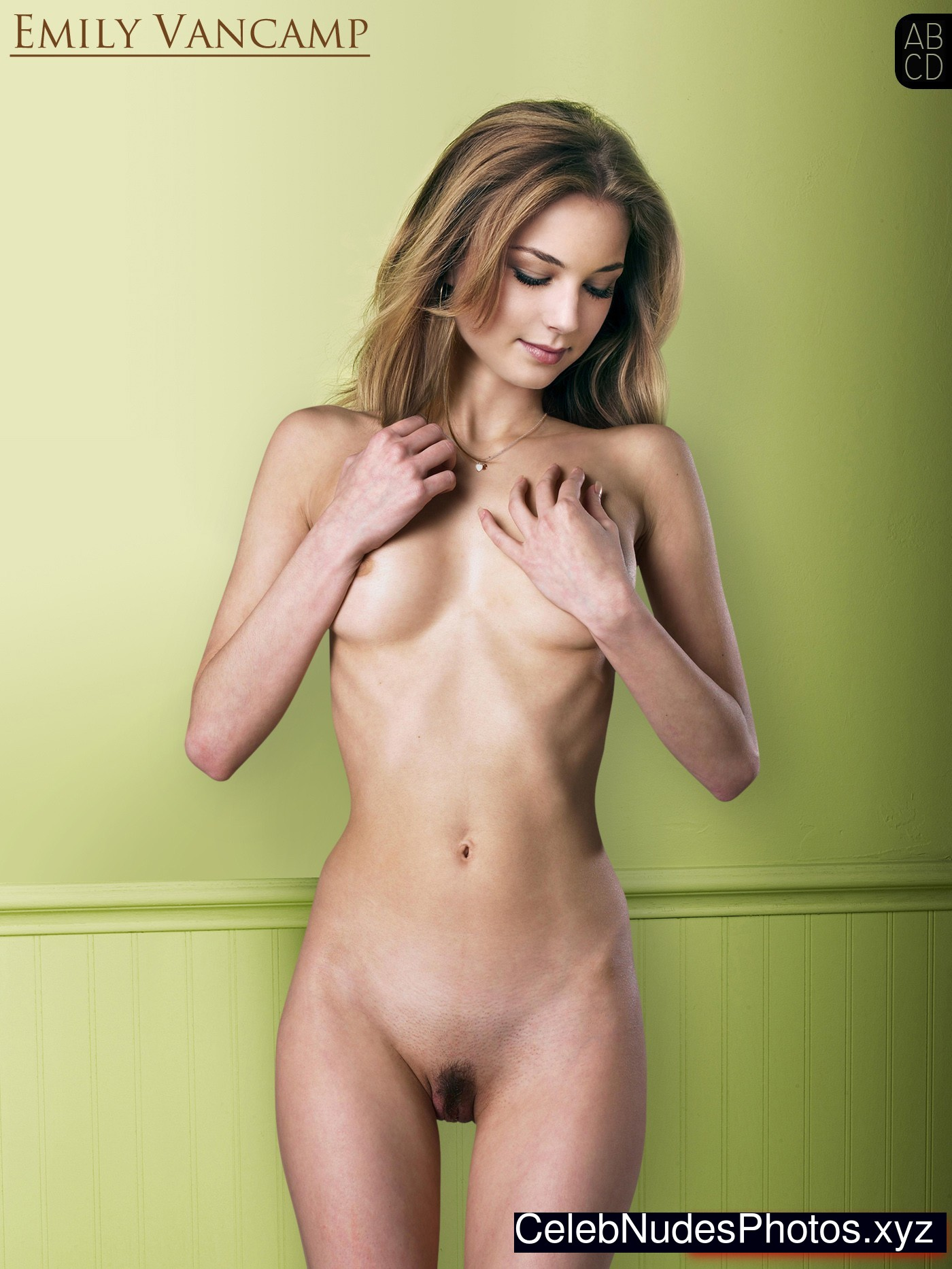 More than nude emily vancamp gallery absolutely not