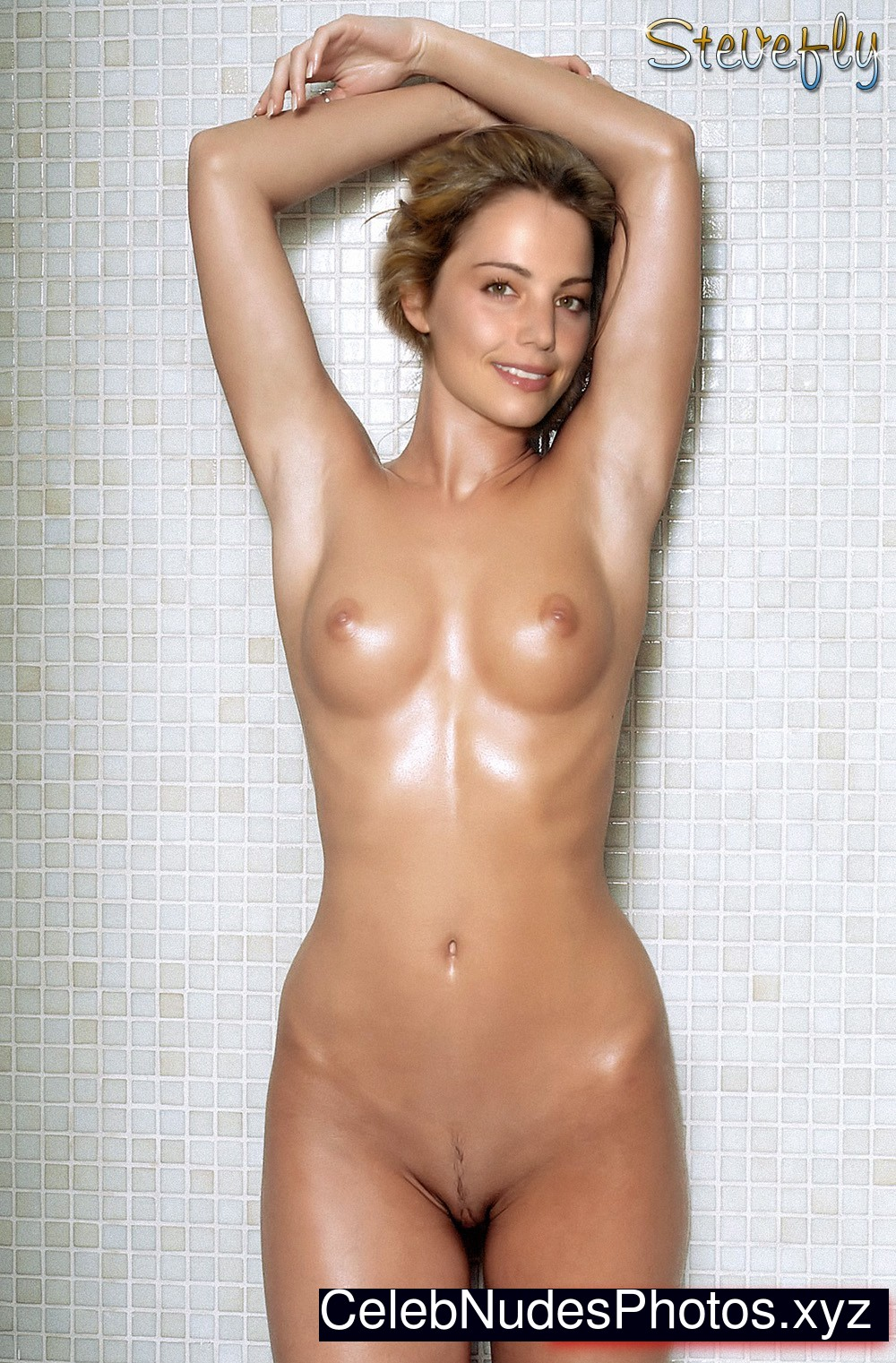 Erica Durance Real Celebrity Nude sexy 23