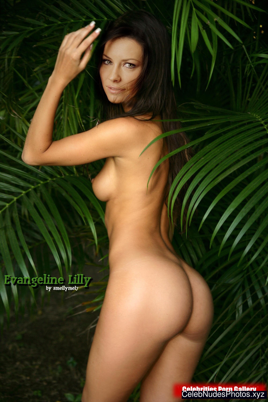 Evangeline Lilly celebs nude