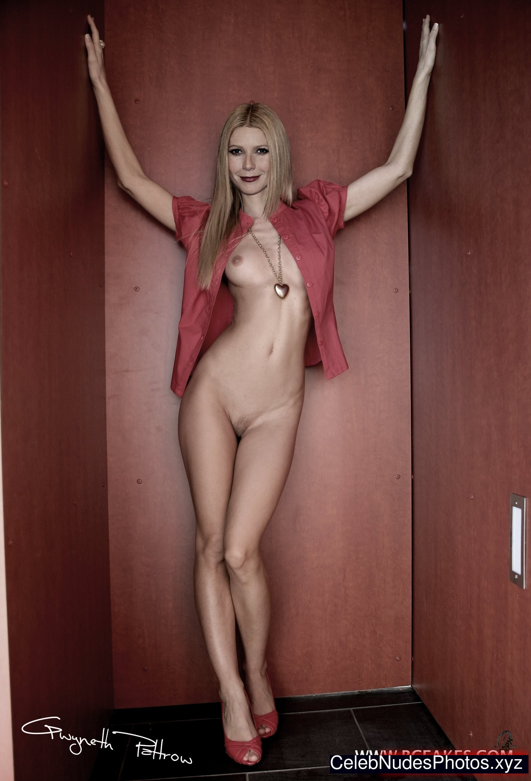 Gwyneth Paltrow Nude Pictures 108