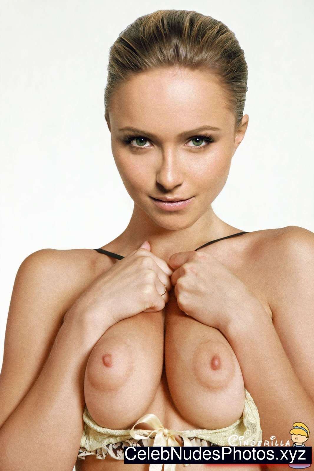 Think, that Hayden panettiere fake nudes was