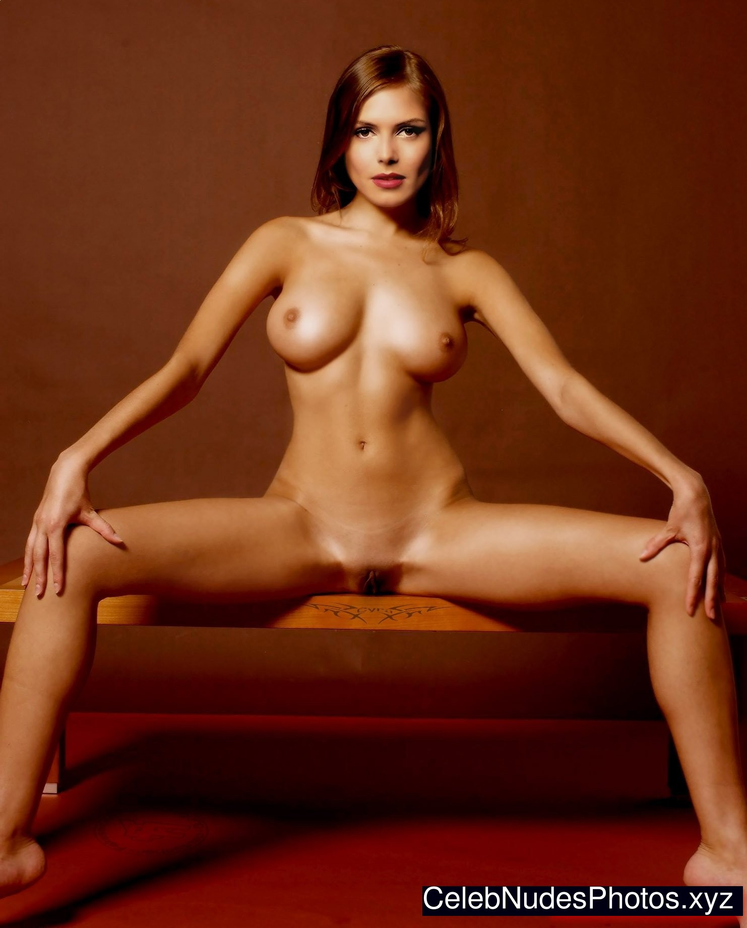 anna ivanovic nude pic