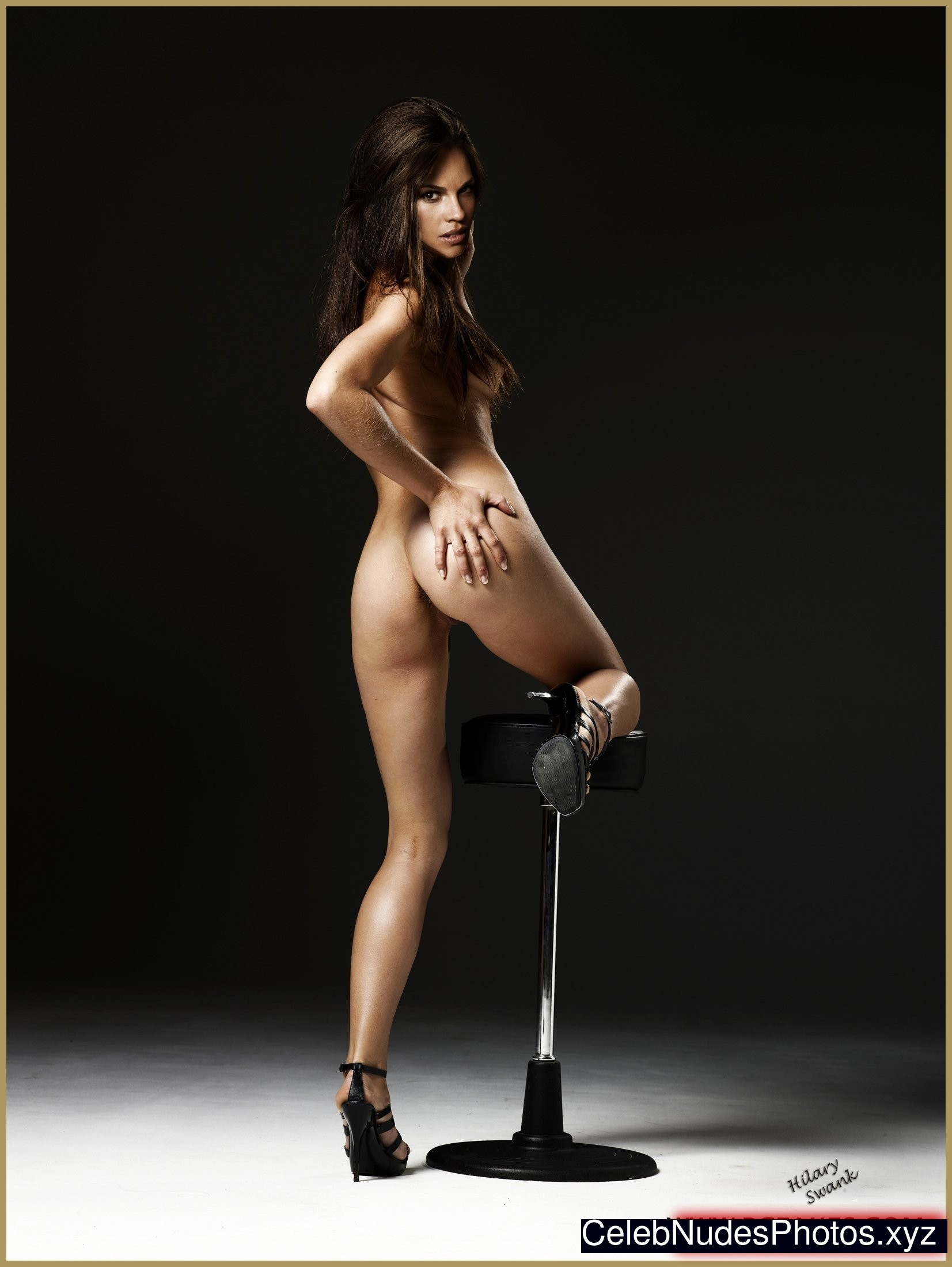 from Ramon hilary swank hot and nude
