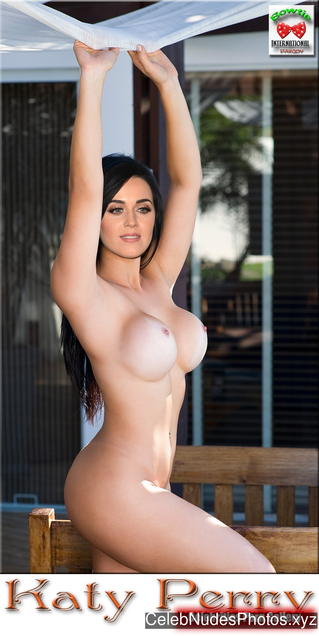 Katy Perry Naked Celebrity Pic sexy 27