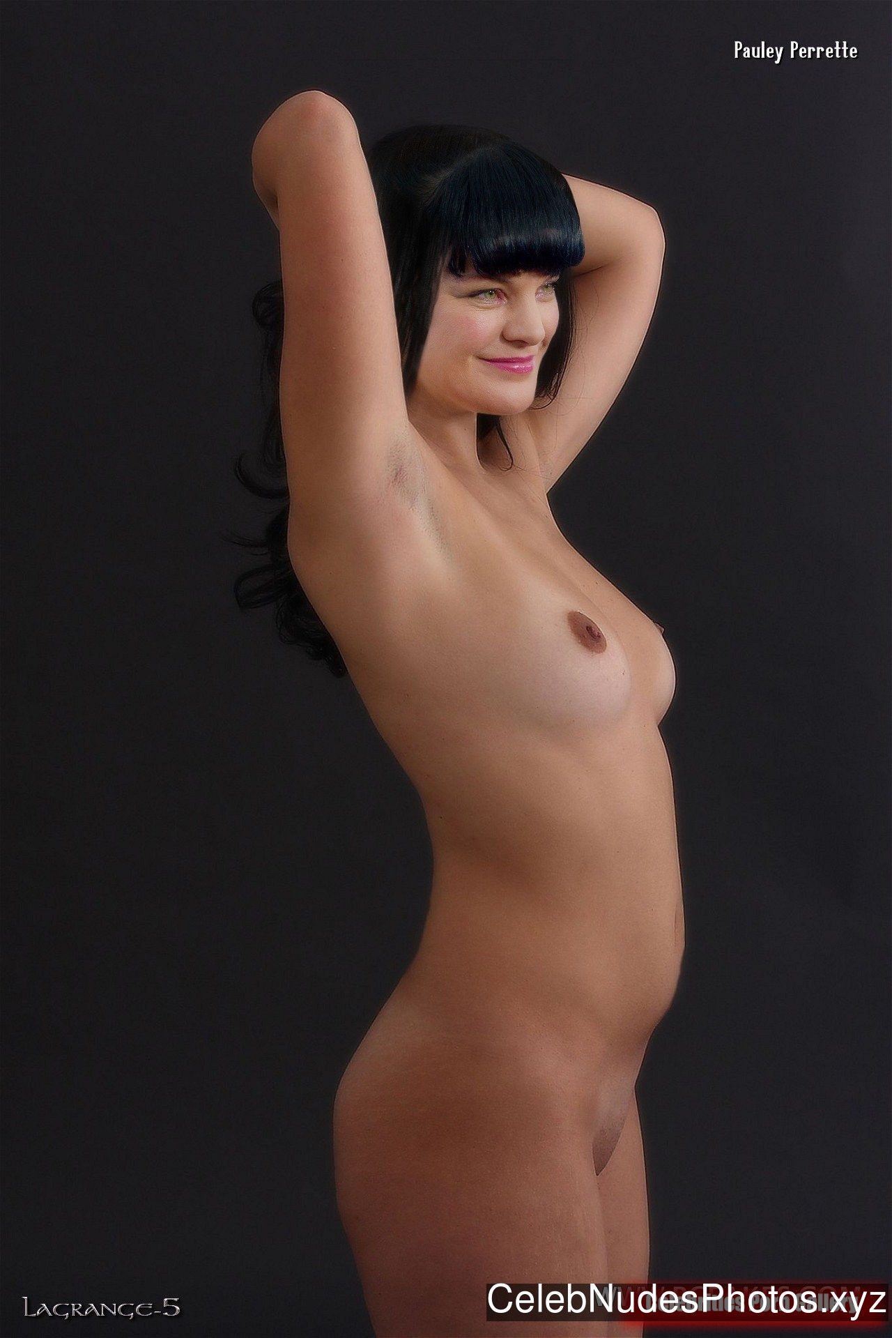 Valuable Pauley perrette nude boobs whom can
