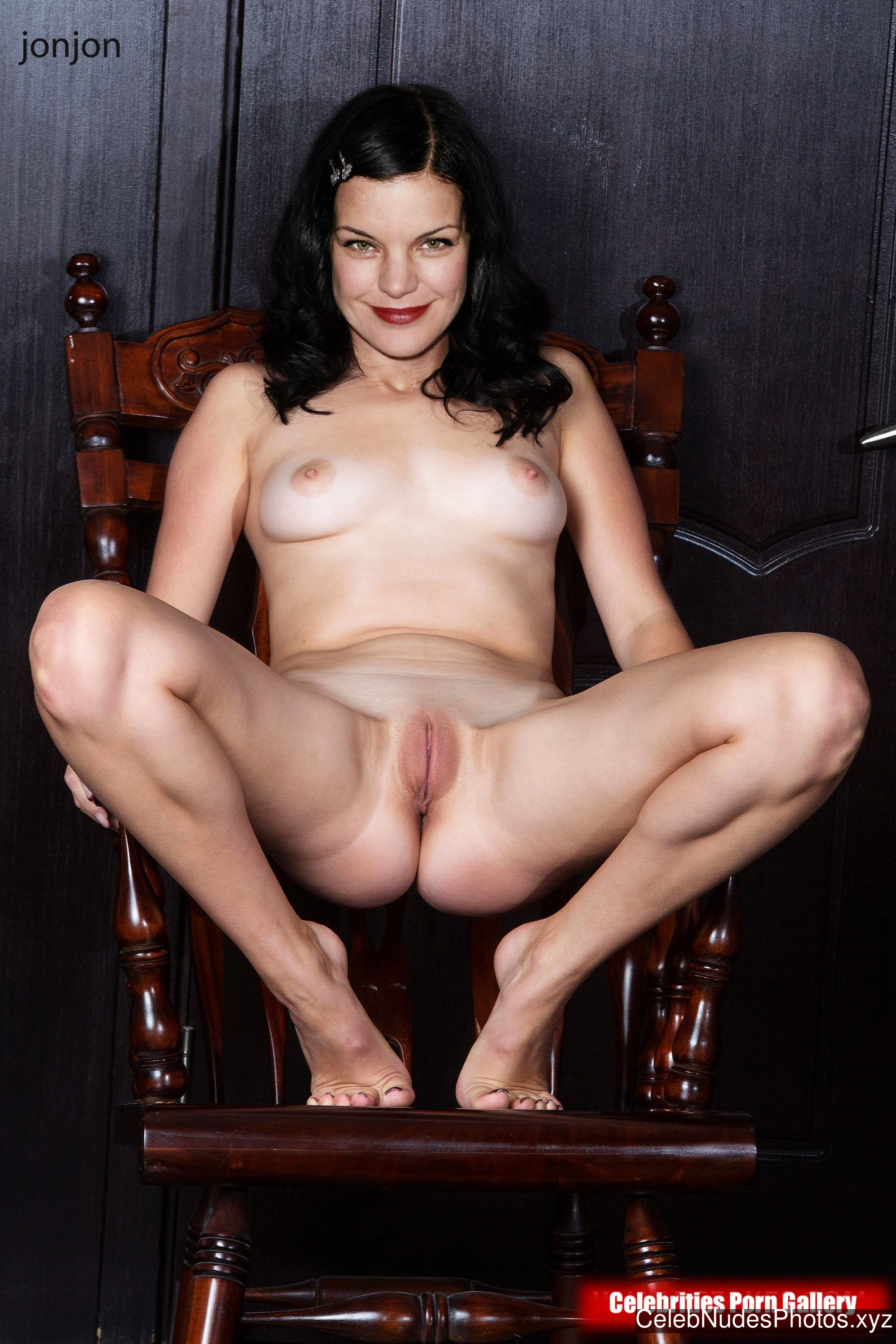 Apologise, but, ncis pauley perrette porn something