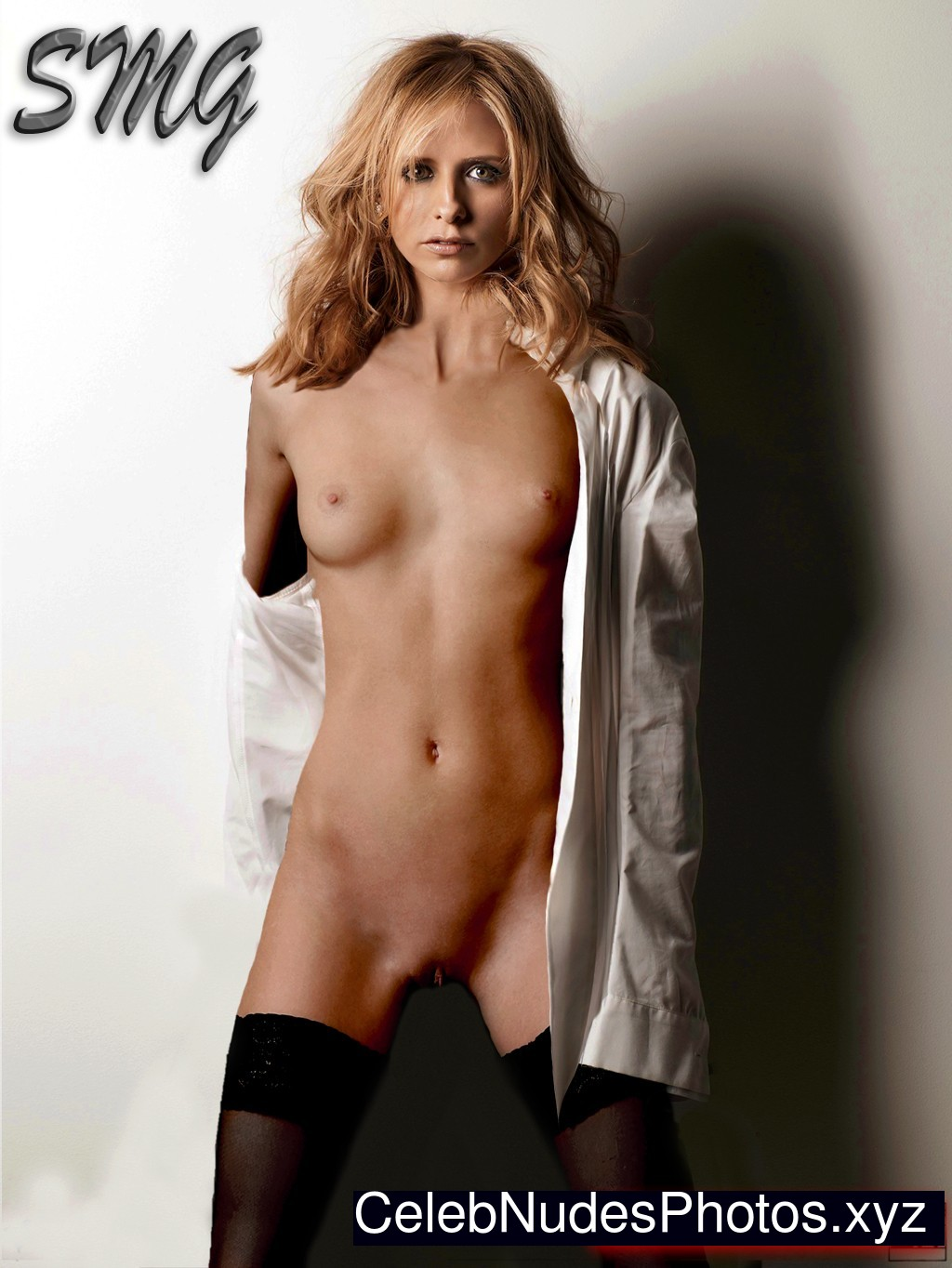 Sarah Michelle Gellar Sexy Photos Gallery 4