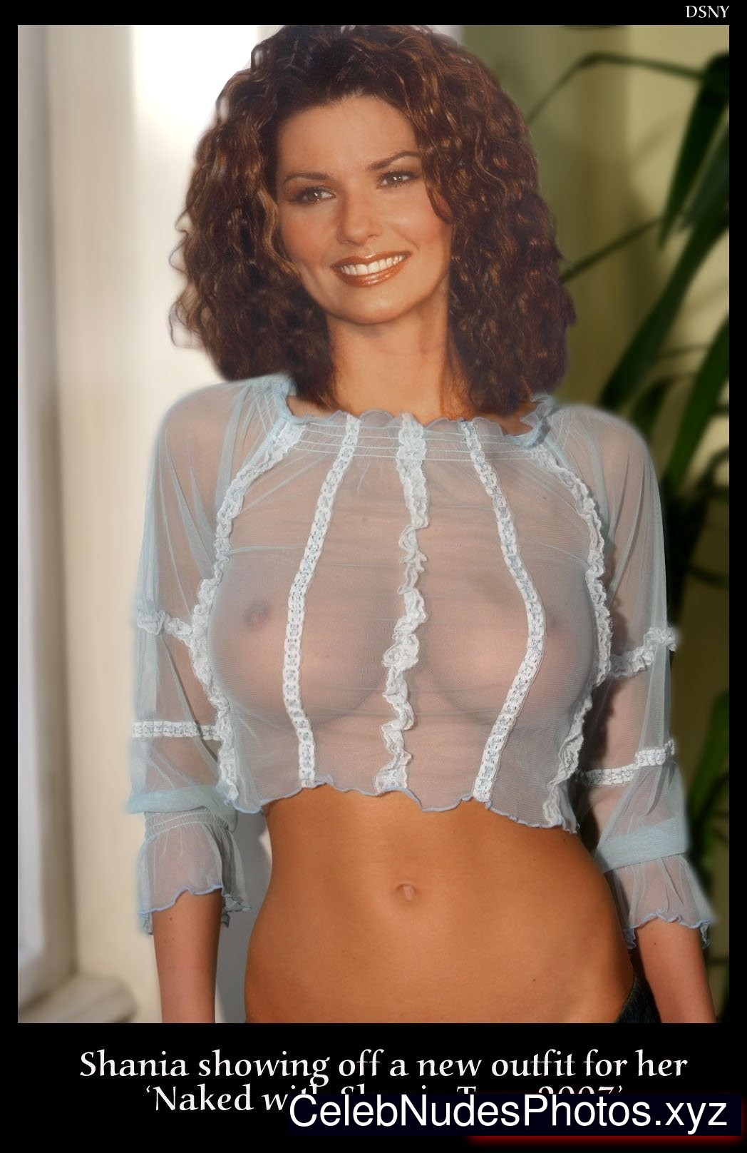 Naked shania twain fake nude pictures what words