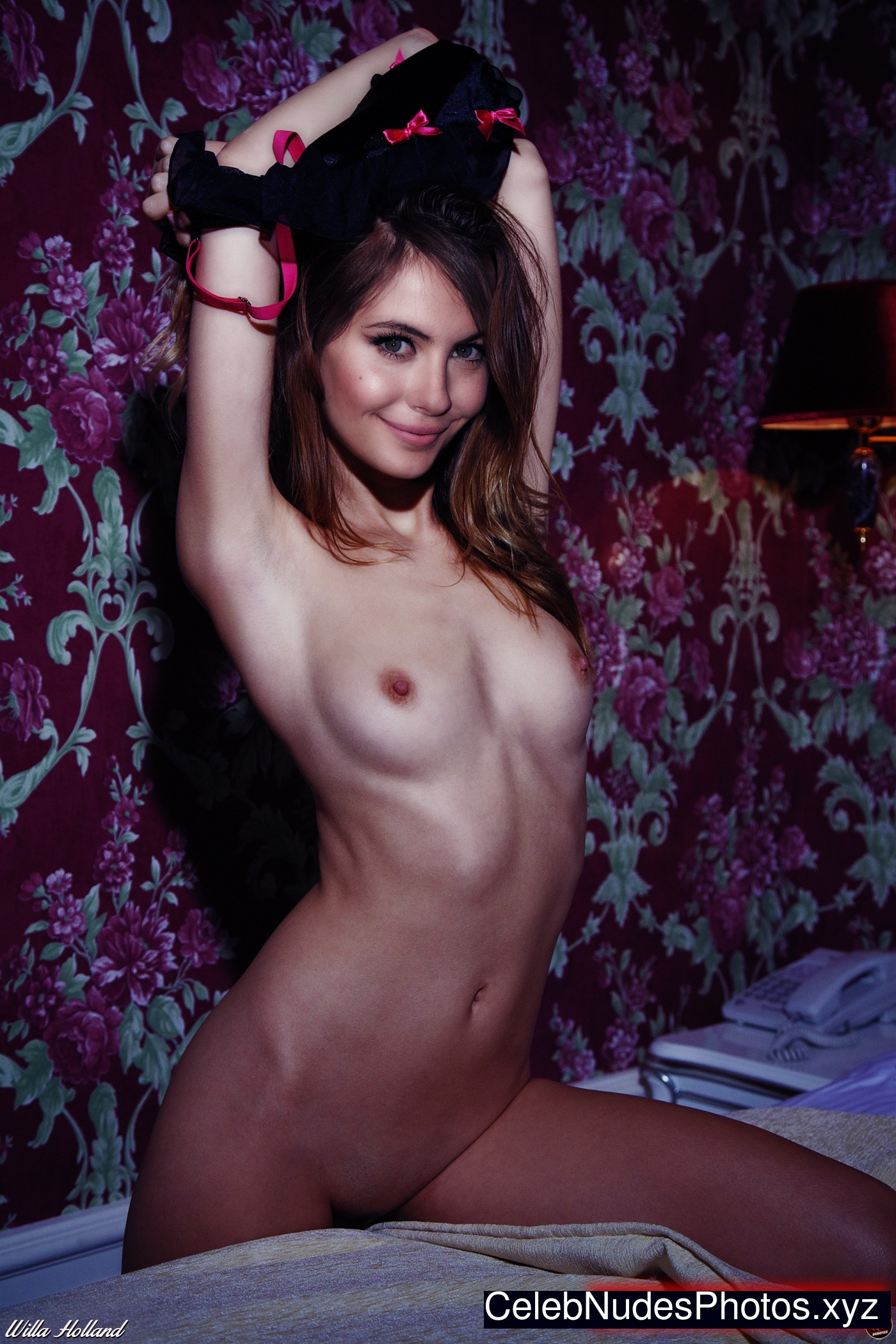Accept. The willa holland topless movie scenes think, that