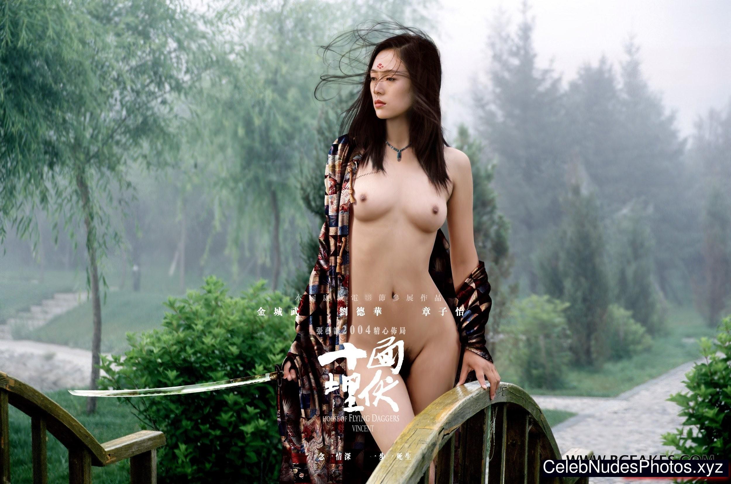 Zhang Ziyi Pussy 21