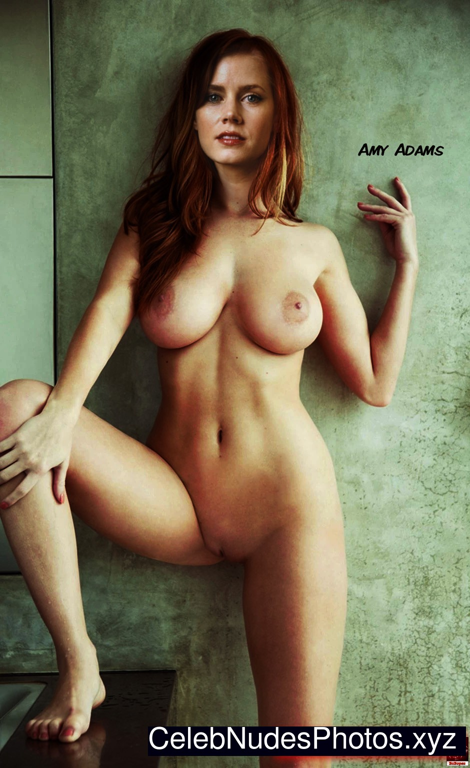 Amy Adams naked celebritys