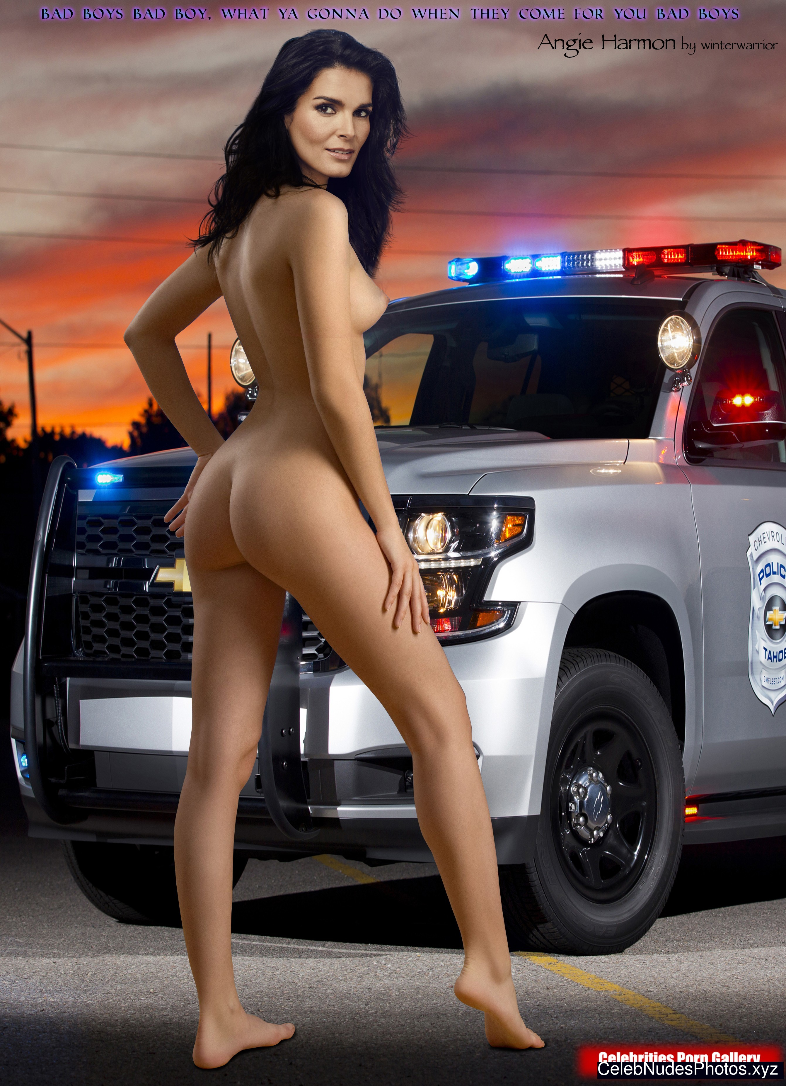 Angie Harmon nude celebrity pictures
