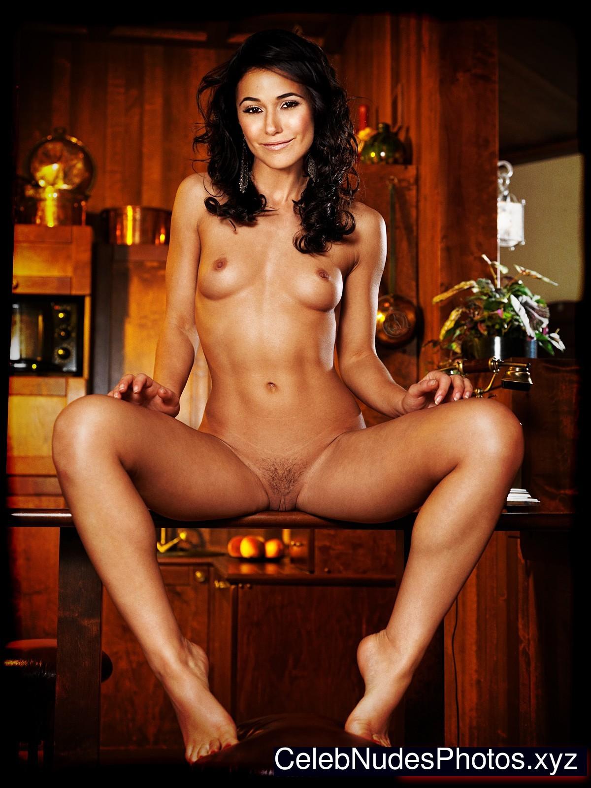 Emmanuelle Chriqui nude
