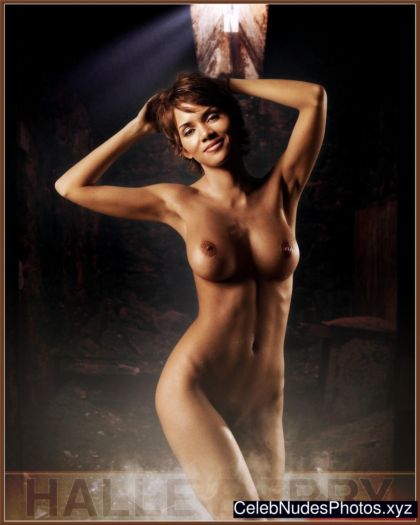 Halle Berry celebrity nude pics