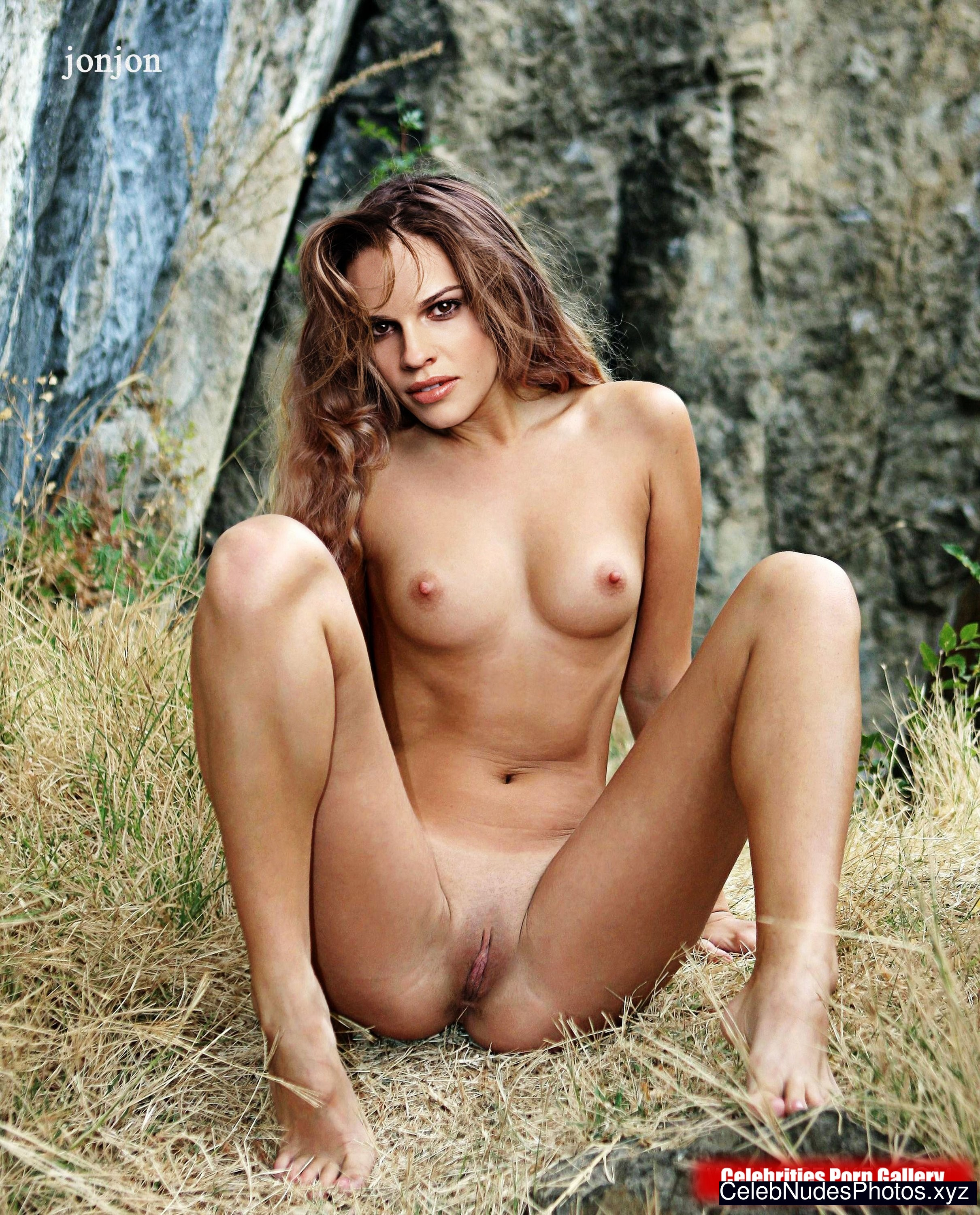 Hilary Swank celebrity naked