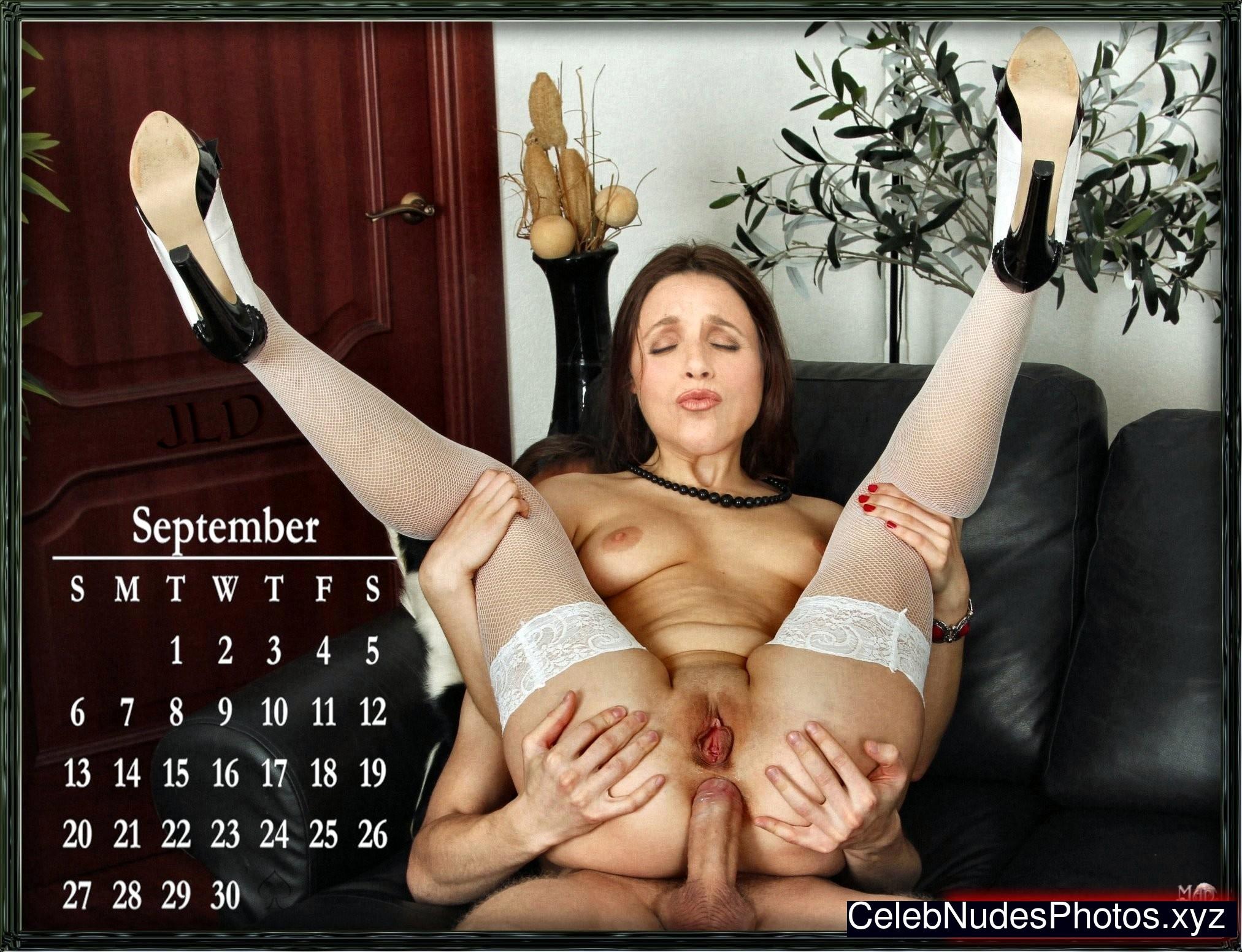 Julia Louis-Dreyfus free nude celeb pics
