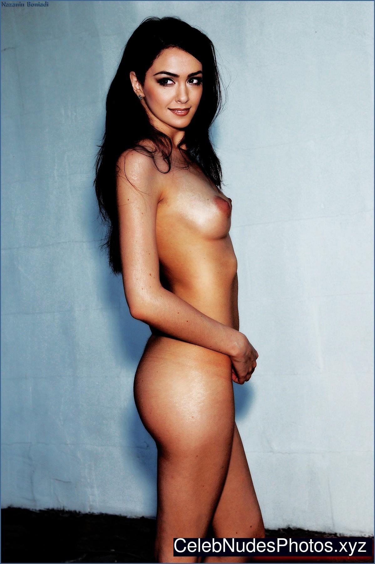 Nazanin Boniadi naked celebrity