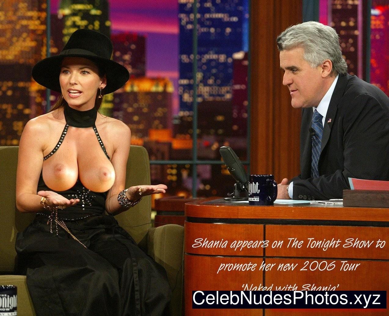 Shania Twain free nude celebrities
