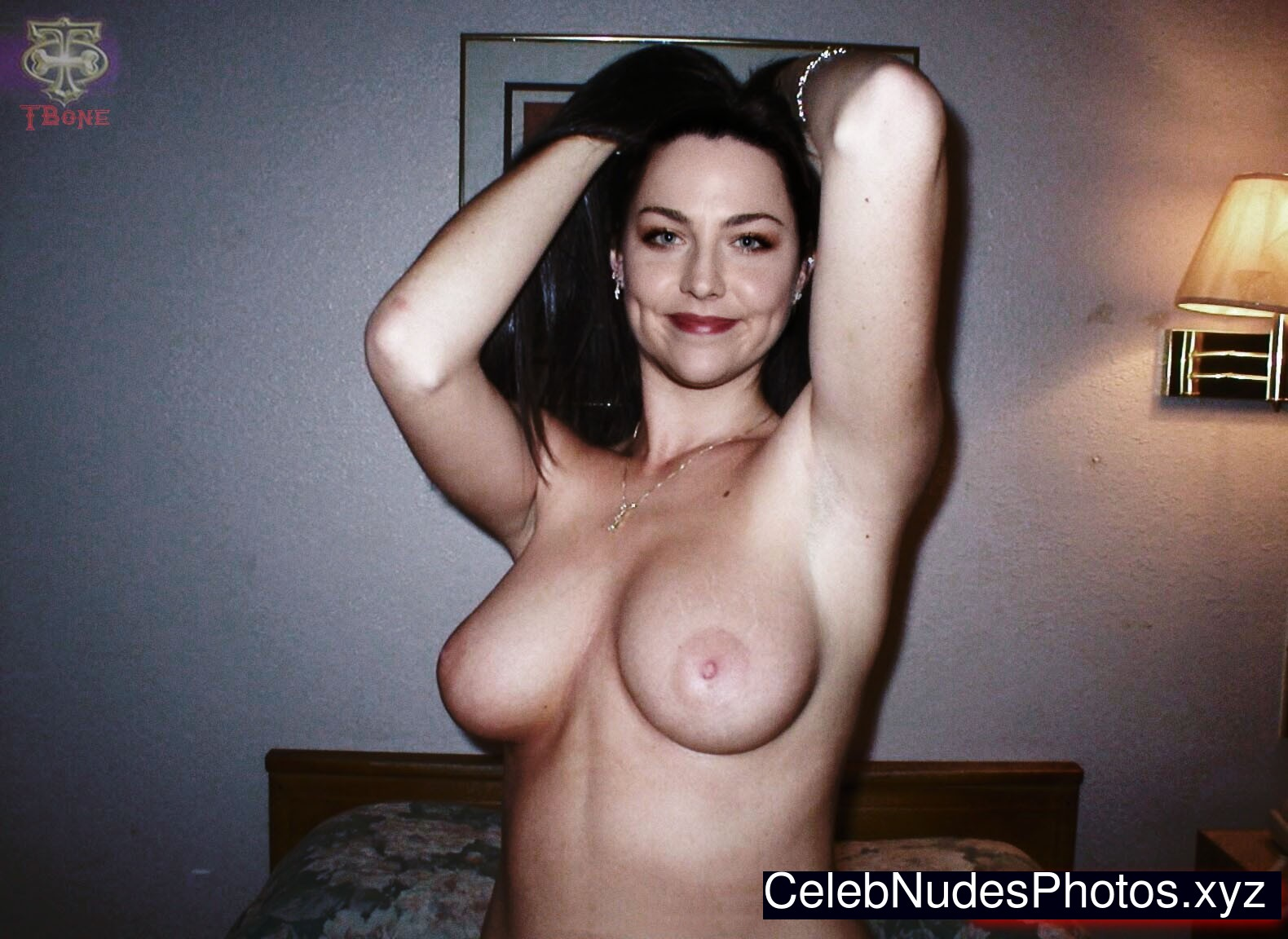 naked amy lee
