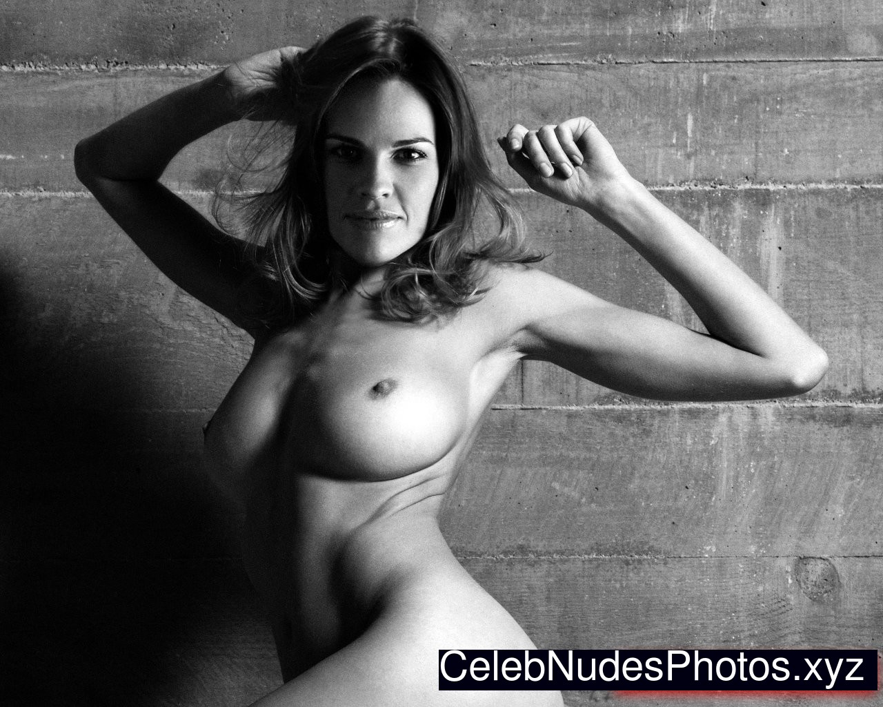 Hilary swank naked gif