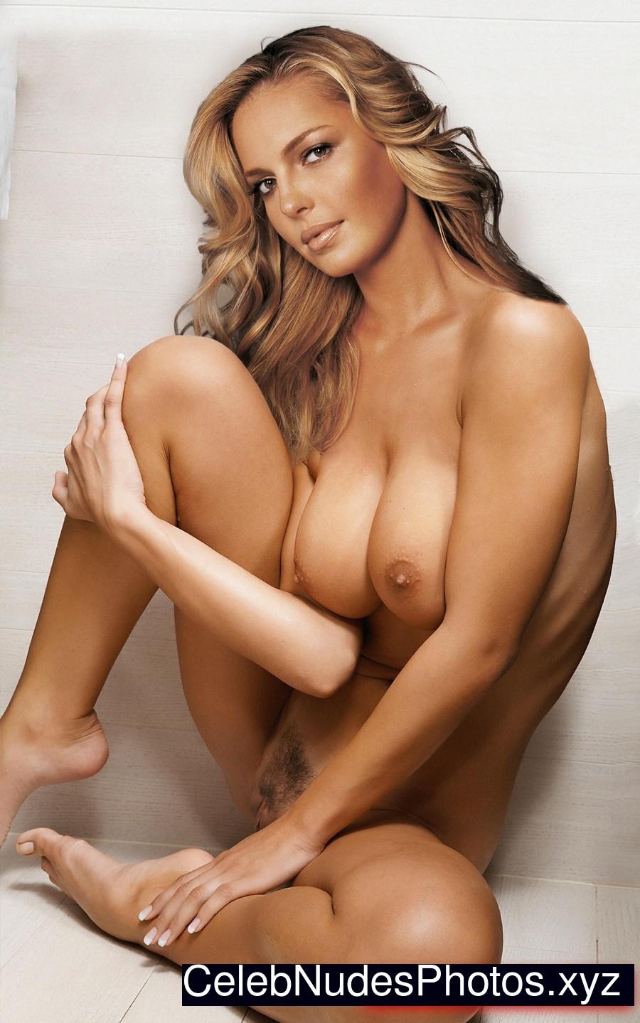 katherine heigl naked videos