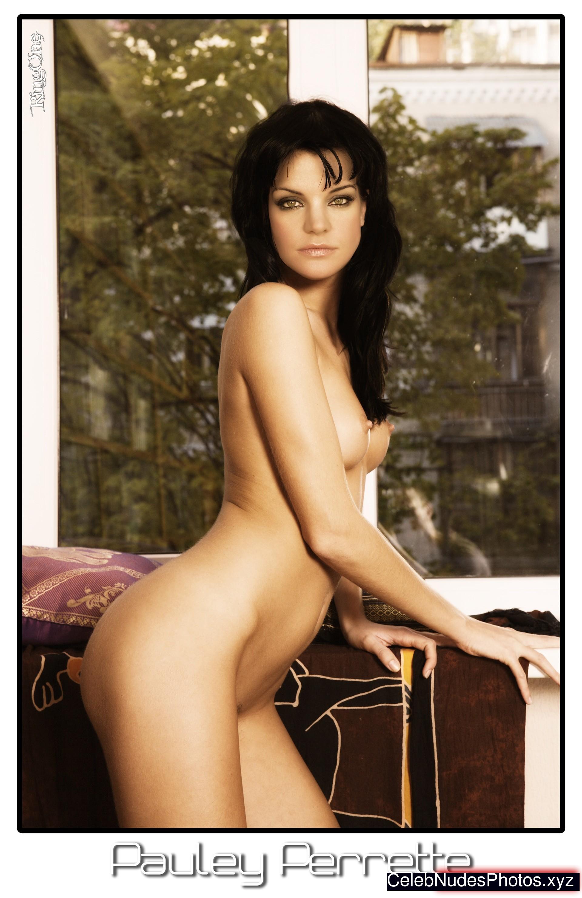 free pauley perrette nude