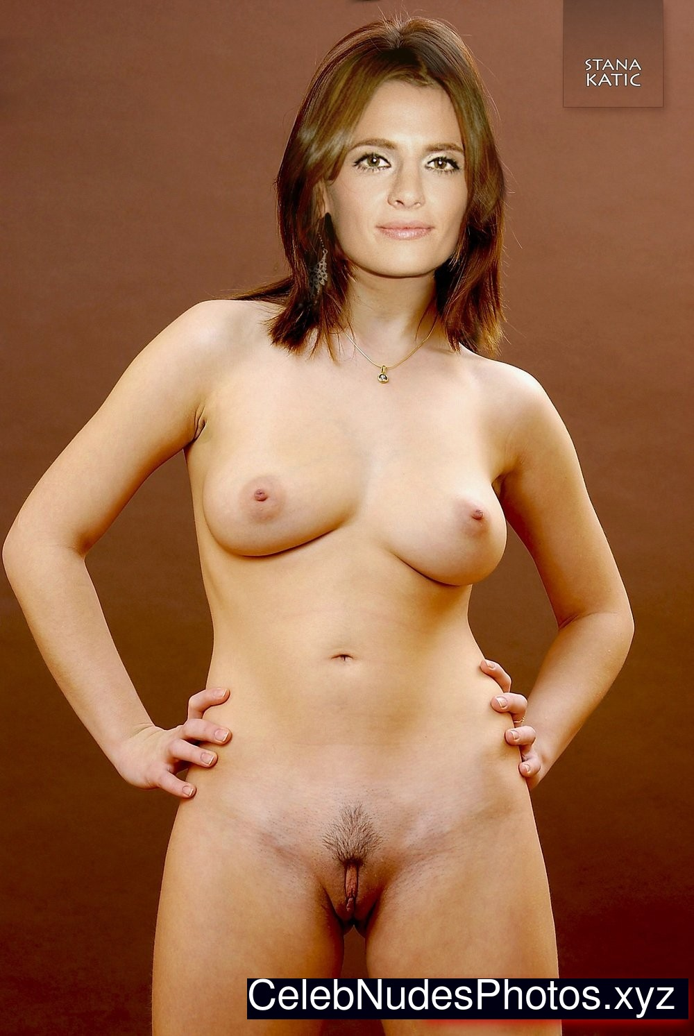 stana katic naked picture