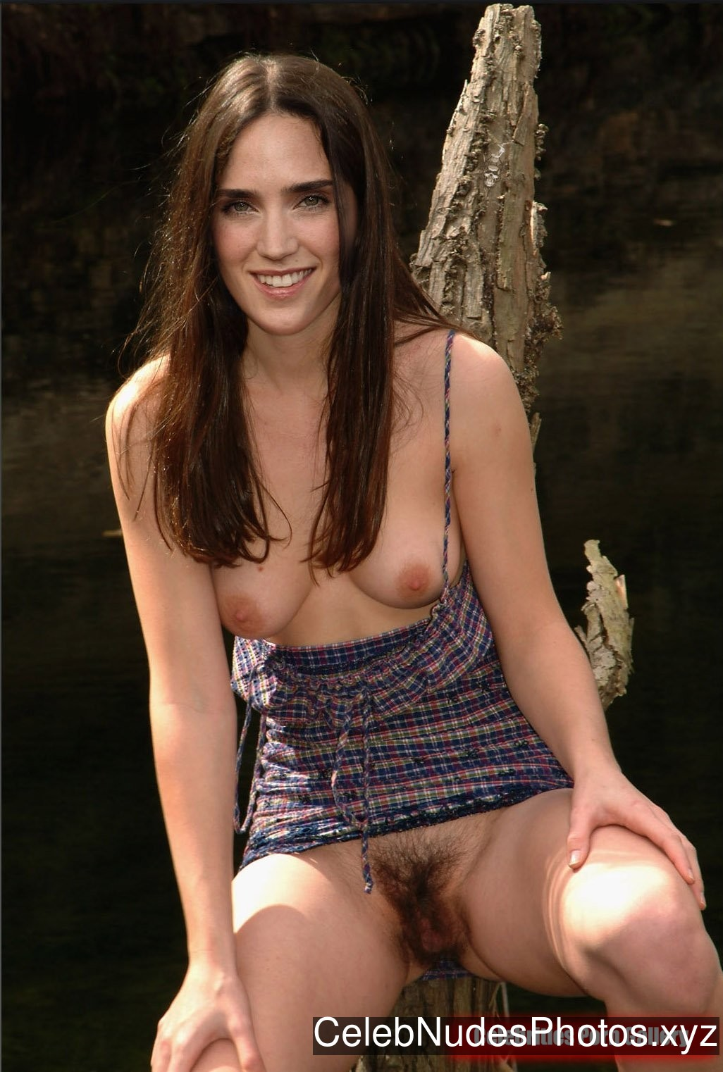 Jennifer Connelly Fakes